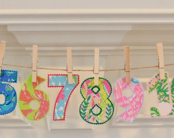 Iron On Lilly Pulitzer Inspired Monthly Numbers