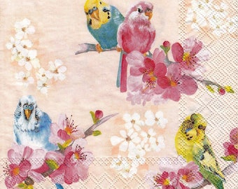 VERY beautiful PARAKEETS 1 lunch size paper towel 655
