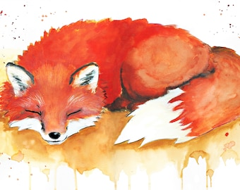 Sleeping Fox - Print - Poster watercolour