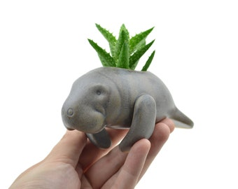Small cute manatee planter- ceramic planter, animal planter - made in Brazil - mother's day