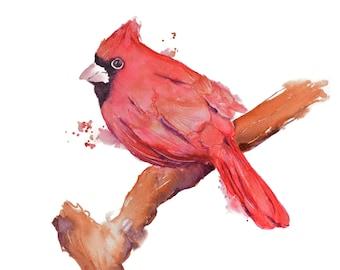 Cardinal Watercolor Art Print Watercolor Painting, Bird Art Print, Cardinal Painting, Bird Watercolor Painting, Bird Artwork, Red Bird Print
