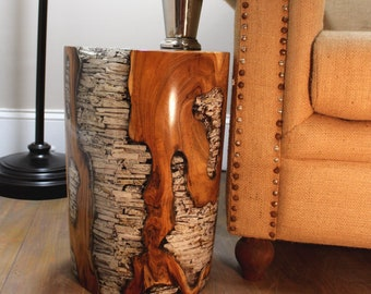 Teak Root Wood and Clear Lucite Resin Cylinder End Side Table Night Stand MNTCP