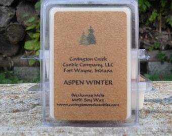 Aspen Winter 3 or 6 ounce Soy Breakaway Melt.
