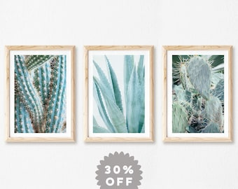 Cactus Prints, Set Of 3 Prints, Blue Cacti, Botanical Photography Prints, Cactus Decor, Nature, Wall Art, Agave, Prickly Pear, Art Prints