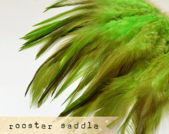 50 pcs+ - GREEN - Rooster Saddle feathers - 2 inch strip - two-tone, pointy tip, shiny feathers, exotic feathers (RS008)
