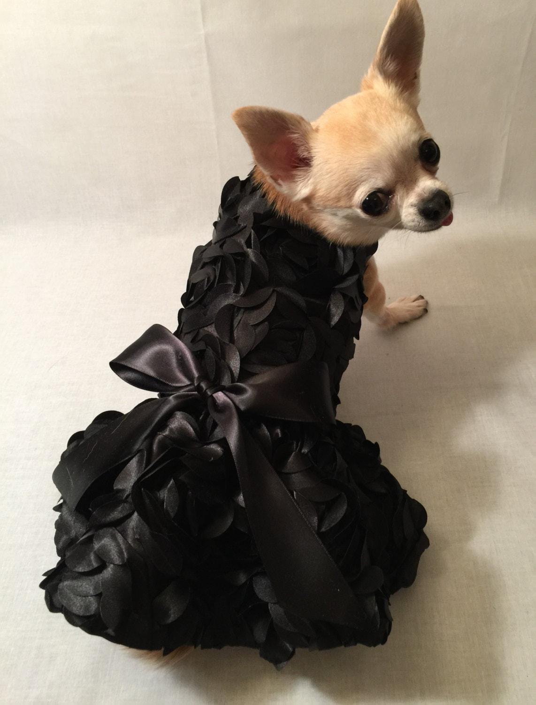 Beautiful black rosettes wedding dog dress bridesmaid dog zoom ombrellifo Choice Image
