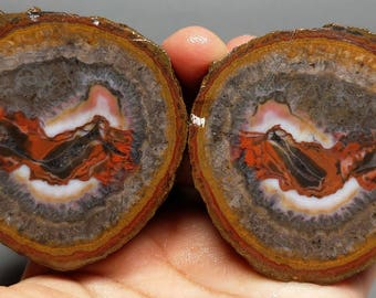 Pair of Rough(Unpolished)Agate/Achat Nodule Specimen China/Chinese Fighting Blood Agate/Warring States Red Agate Xuanhua Hebei China XH-064