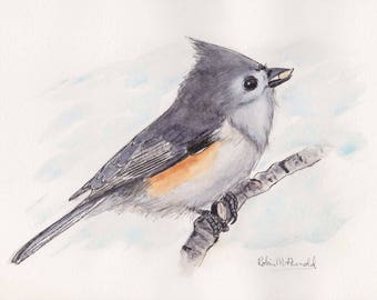 Tufted Titmouse 5x7  Pen and Ink and Watercolor, animal,birds,bird lover, titmouse, wildlife,nature, bird painting,original,line and wash