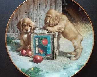 Puppy Playtime designed by Jim Lamb in 1987