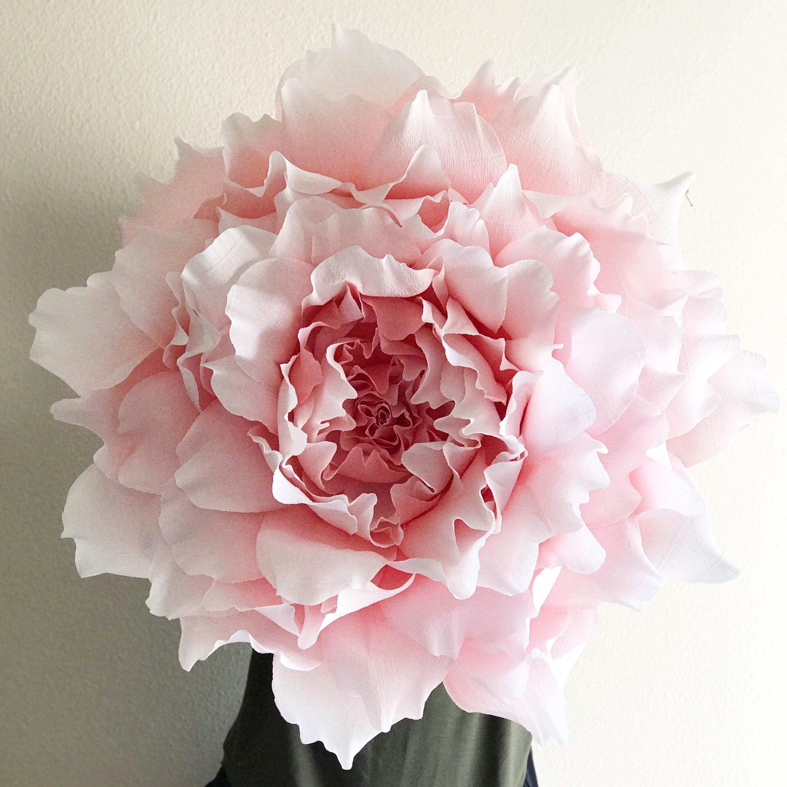 Giant paper flower crepw paper peony nursery wall zoom mightylinksfo
