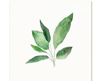 Watercolor Botanical Art Print. Peace Lily Leaves. House Plant Art. Living Room Decor. Nature Art. Simple Botanical Painting. Nursery Art.
