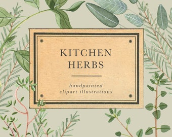 Kitchen Herbs watercolor clipart • wedding clipart • invitation clipart • handpainted illustration • gift tag clipart • botanical