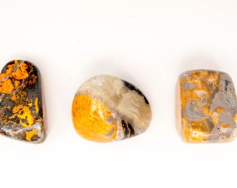 Large Bumble Bee Jasper Tumbled stones Bumblebee jasper bumblebee crystals and geodes yellow crystal heal crystal a stone cabochon