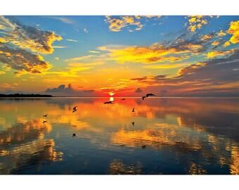 Fine Art Landscape Photography - Vision of Sound, nature photography, sunrise, ocean, birds, prints, canvas