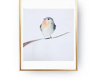 Dare to be seen - Robin - Watercolor Painting Print