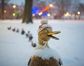 Make Way for Ducklings, Boston Public Garden, Winter Hat, Duck Statues, Christmas, Xmas,Lights, Winter, Snow, Ducklings