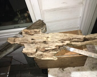 "3 ft x 12"" large flat worm-holed driftwood"