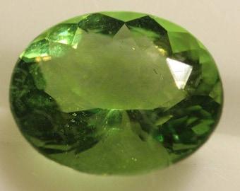 Fluorite Green 3.10cts Oval Cut 10.00 x 8.20mm H4 Belgium Y9380 Green Gem Loose Faceted Gemstone Collector Gemology Gemological