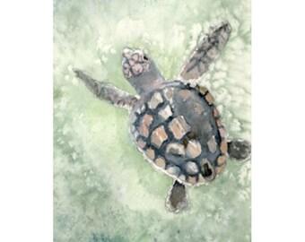 Sea turtle watercolor print 8x10, loggerhead beach art, choose matte color and finish (giclee matte or glossy)
