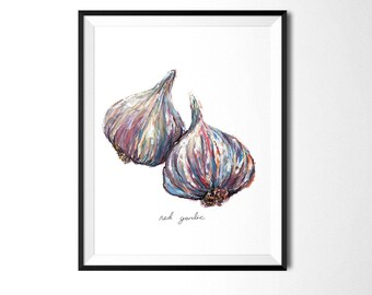 Garlic Print, Vegetable Painting, Food Illustration, Kitchen Art, Kitchen Decor, Kitchen Print, Cafe Art, Vegetable Print, Botanical Print