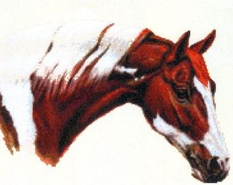 PDF Beautiful Cross Stitch Pattern - Horses Head (A52)