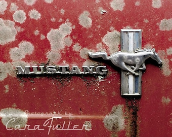 Mustang Emblem on Red Ford Photograph