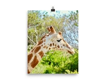 Giraffe head print