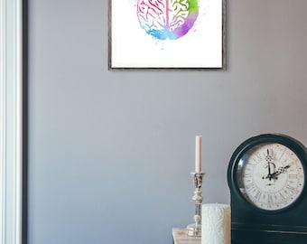 Watercolor Brain Anatomy Print - Brain Watercolor Art - Medical Student Gift - Medical Office Decor - Watercolor Prints - Colorful Wall Art