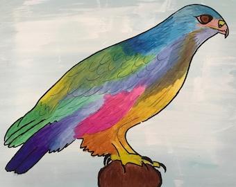 Colorful Falcon
