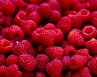 Raspberry Handmade Soy Wax Candle