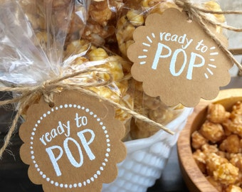 Ready to Pop Baby Shower Favor Kit-Tags + Bags Baby Shower Favor-Handmade Favor Tags-Popcorn Baby Shower Favor-DIY-Set of 20