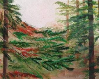Tahoe Pines