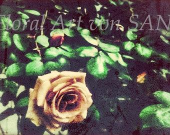 """Floral Art Image """"Hier"""""""