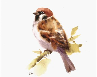 Sparrow - Original Watercolor Bird Painting 7 4/5 x 7 4/5 inches