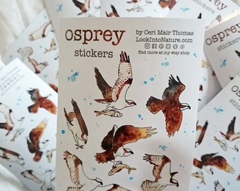 Animal stickers, Osprey stickers, fish hawk, multi buy available