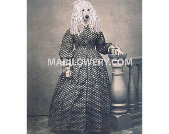 White Poodle Collage Art Print, Victorian Dog in Dress Animal in Clothes 5x7 Inch Print, Anthropomorphic Animal Wall Decor, Year of the Dog