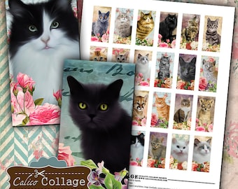 Kitten Digital Collage Sheet 1x2 Domino Images for Pendants, Bezel Settings, Magnets, Resin Jewelry - Calico Collage Printable Images