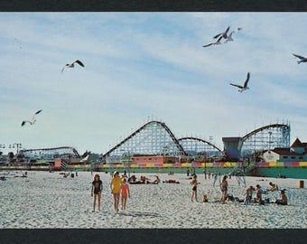Santa Cruz, California Postcard - Vintage Color Photo Postcard of the Giant Dipper and Santa Cruz Beach