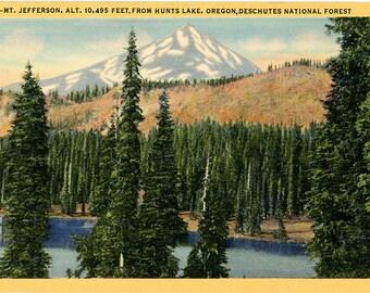 Deschutes National Forest Mt Jefferson Hunts Lake Cascades Oregon Vintage Postcard - unused
