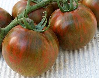 Black Zebra Tomato Heirloom Garden Seed Non-GMO 30+ Seeds Prolific Producer Open Pollinated Gardening