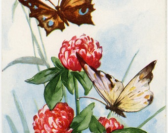 Vintage Easter Postcard Butterflies over Clover Whitney Made Unused Lightly Embossed