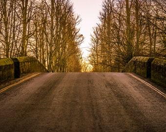 Arundel...the bridge between the trees