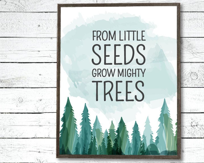 From Little Seeds Grow Mighty Trees Nursery Printable
