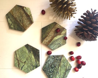 New***   Green Forest Hexagon Marble Coasters. Set of 4. Exotic Marble Coasters. Geometric Marble Coasters. Polished Marble