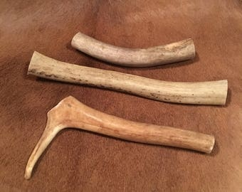Three Caribou Antler Dog Chews