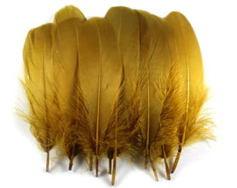 Goose Feathers Brown-Olive 10818