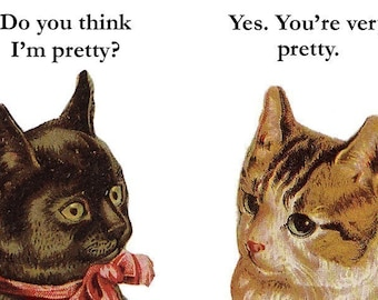 Am I Pretty? - Cat Magnet