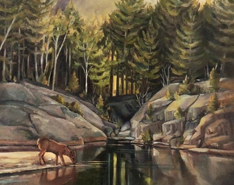 Down by the Pemigewasset River Framed Oil Painting