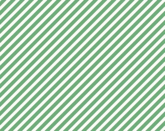EXTRA 20 30% OFF  On Trend by Jen Allyson for My Mind's Eye Mint Stripe