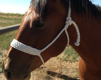Mule Tape Braided Halter with matching lead rope, Horse Halter, Halter, Lead Rope